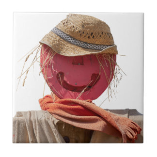 funny scarecrow in the farm tile