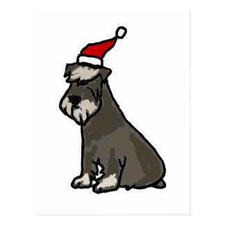 Funny Schnauzer in Christmas Hat Postcard