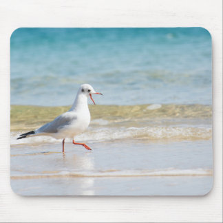 Funny seagull mouse pad