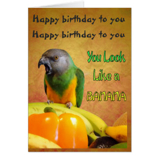 Funny Senegal Parrot Birthday Card