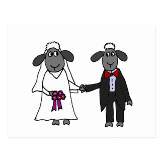 Funny Sheep Wedding Cartoon Postcard