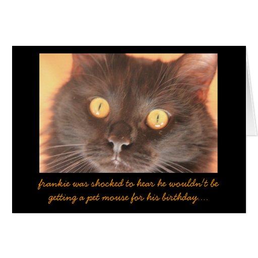 Funny Shocked Cat Birthday Card, Birthday Wishes..