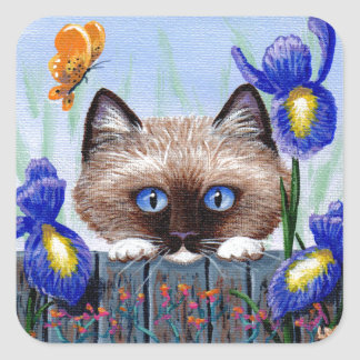 Funny Siamese Ragdoll Burmese Cat Irises Square Sticker
