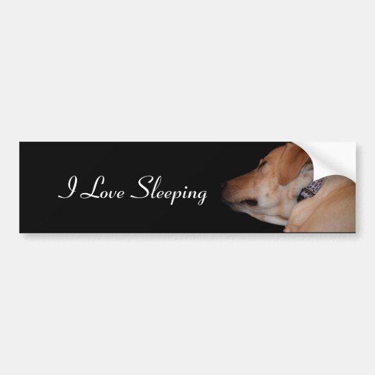 Funny Sleeping Labrador Retriever Bumper Sticker
