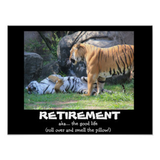 Funny Sleeping Tiger (16x12), RETIREMENT Poster