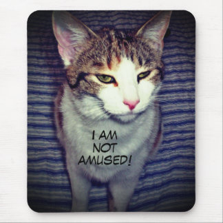 Funny snarky cat mouse pad