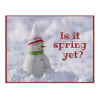 Funny Snowman Greeting Postcard