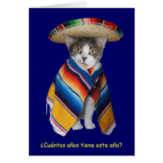 Funny Spanish Cat/Kitty Birthday Greeting Cards
