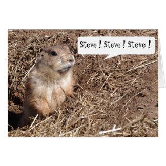 Funny Squirrel Birthday Card