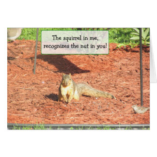 Funny Squirrel Humor Friendship Card