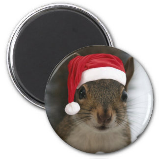 Funny Squirrel Wearing Santa Hat 2 Inch Round Magnet