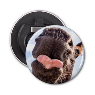 Funny Straight from the Horse's Mouth Photo Button Bottle Opener