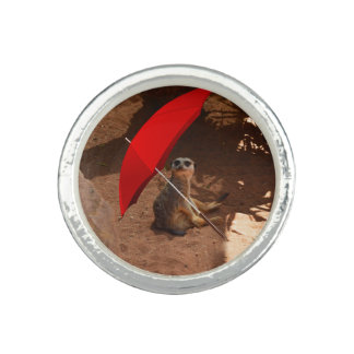 Funny Sun Smart Meerkat Under Umbrella, Rings