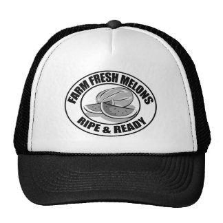 Funny T-shirts Gifts Mesh Hat