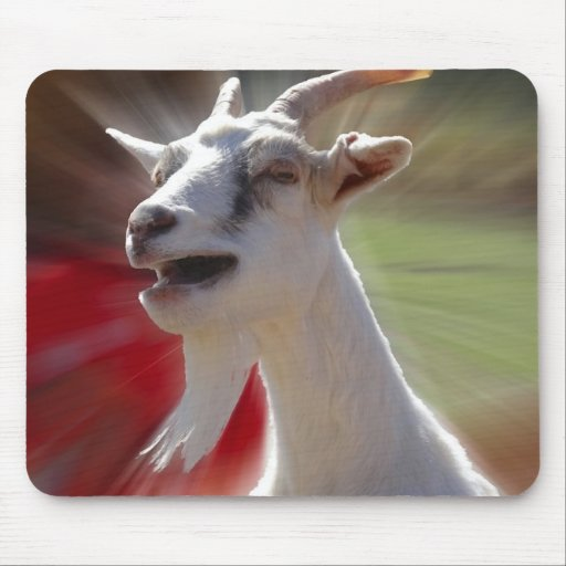 Funny Tallking Goat Photograph Mouse Pads