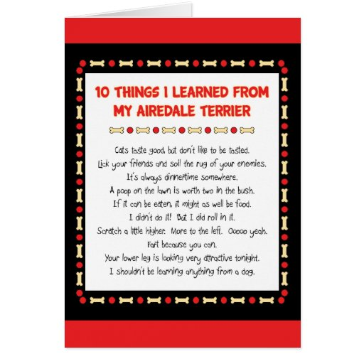 Funny Things I Learned From My Airedale Terrier Greeting Cards