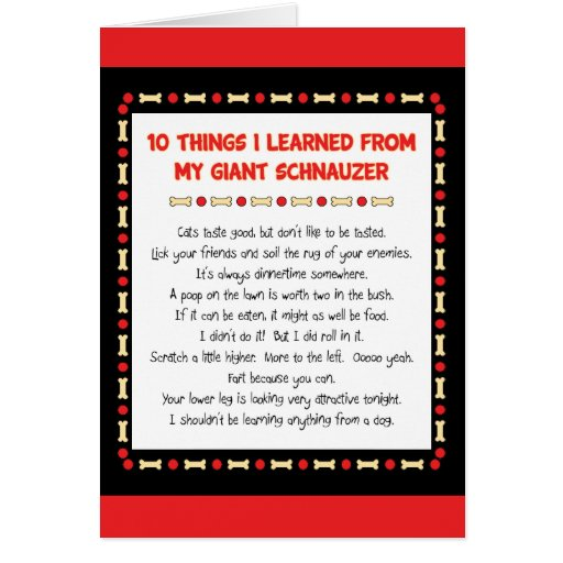 Funny Things I Learned From My Giant Schnauzer Cards