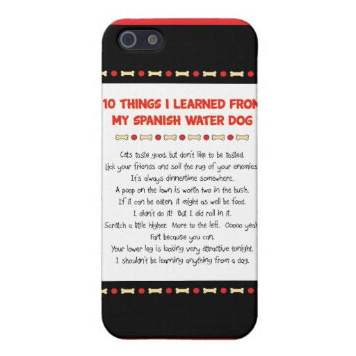 Funny Things I Learned From My Spanish Water Dog Case For iPhone 5