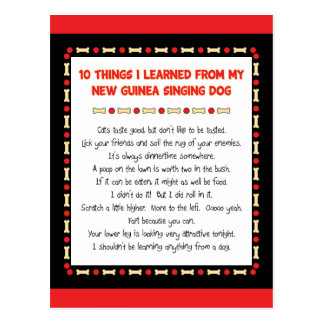 Funny Things I Learned From New Guinea Singing Dog Post Card