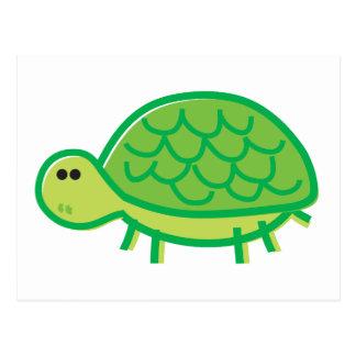 Funny Tortoise on White Postcard