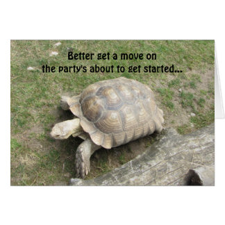Funny Turtle Birthday Card