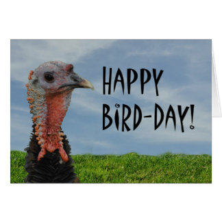Funny Ugly Turkey Happy Thanksgiving Birthday Card