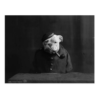 Funny Vintage Photograph of Dog in Uniform Postcard