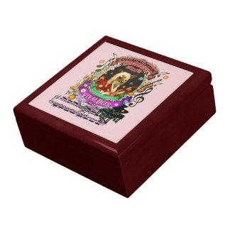 Funny Vivaldeer Animal Composer Vivaldi Parody Gift Boxes