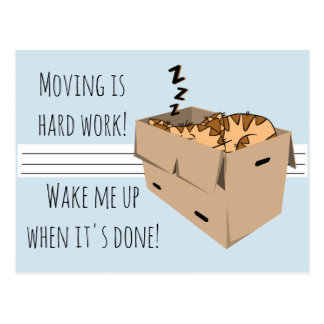 "Funny ""We're Moving"" Cat New Address Announcements Postcard"