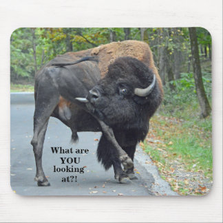 Funny What Are You Looking At? Bull Bison Mouse Pad
