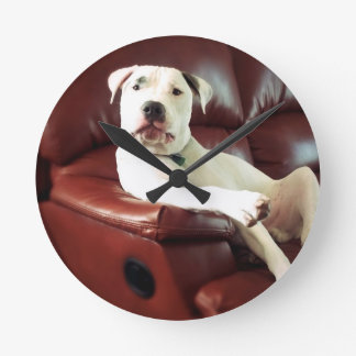 funny white pit bull dog on the couch round clock