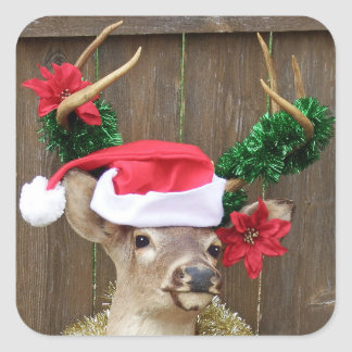 Funny Whitetail Buck Deer Christmas Square Sticker