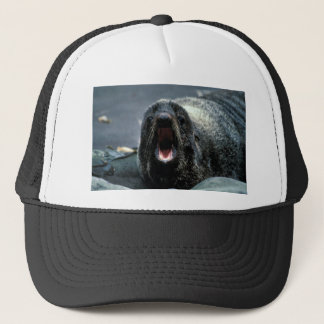 Fur Seal Portrait Trucker Hat