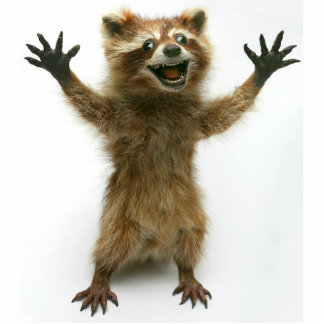 FURIOUSLY HAPPY RACCOON STANDING PHOTO SCULPTURE