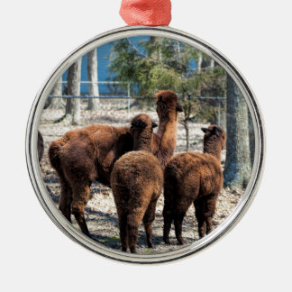 Furry Brown Alpaca Behinds Silver-Colored Round Ornament