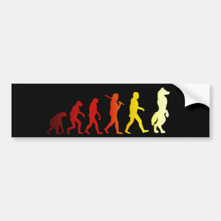 Furry evolution bumper sticker