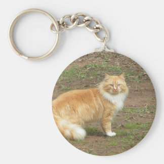 Furry Orange and White Cat Keychain