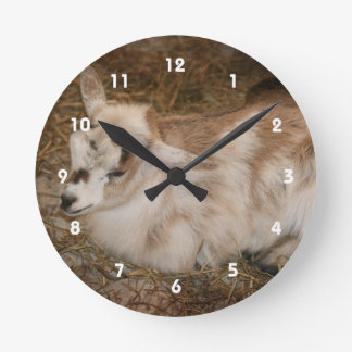 Furry small goat doeling baby wall clock