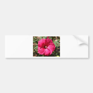 Fushia Flower Bumper Sticker