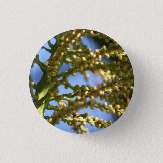 Future Trees pin