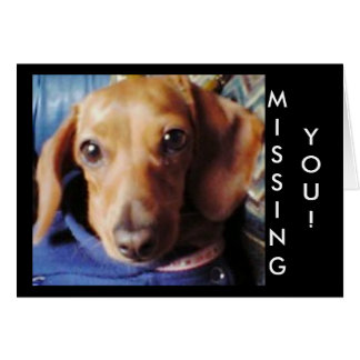 futuu no marron, MISSING, YOU! Card