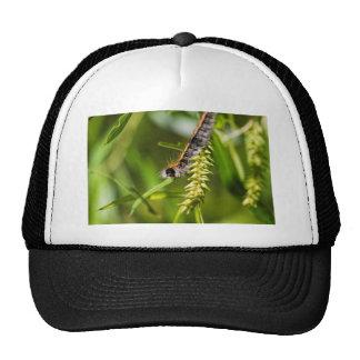 Fuzzy Eastern Tent Worm Caterpillar Trucker Hat