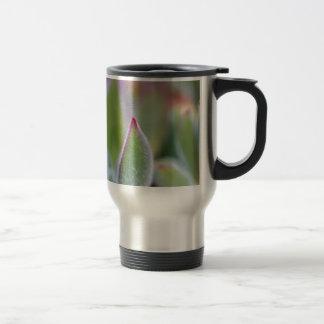 Fuzzy Green Succulent Leaves Macro Travel Mug