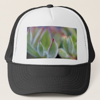 Fuzzy Green Succulent Leaves Macro Trucker Hat