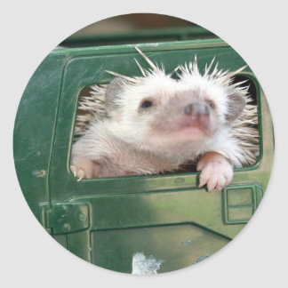 G.I. Hedgehog Round Sticker