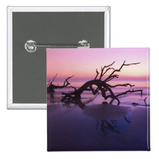 GA Jekyll Island, Tree graveyard on  beach at 2 Inch Square Button