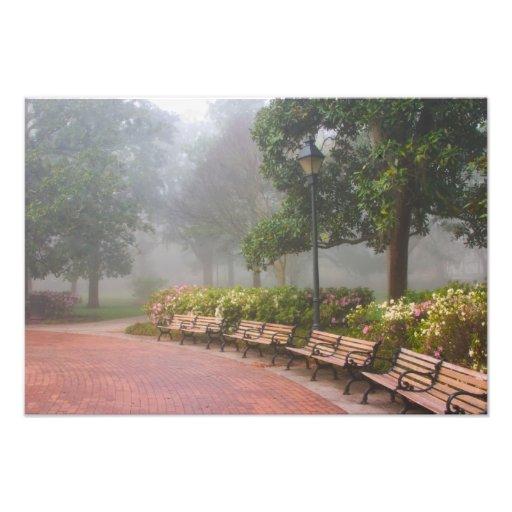GA Savannah, Azaleas along brick sidewalk and Photo Art