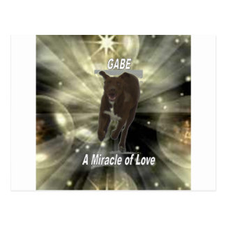 Gabe, A Miracle of Love Postcard