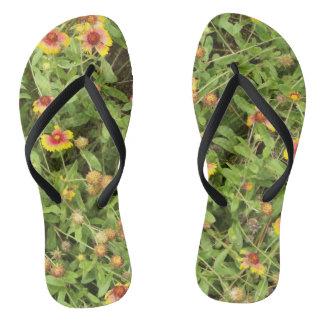 Gaillardia flowers for your flip flops
