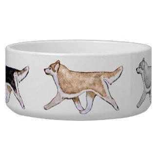Gaiting Siberian Husky Dog Bowl